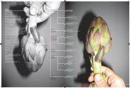 Impressum + Indice 01 02 03 04 05 06 07 08 09 10 11 12 ... - SUPSI