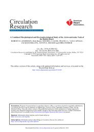 A Combined Morphological and Electrophysiological Study of the ...