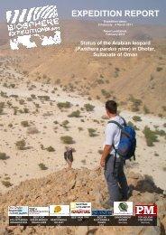 Oman 2011 (Arabian leopard) - Biosphere Expeditions