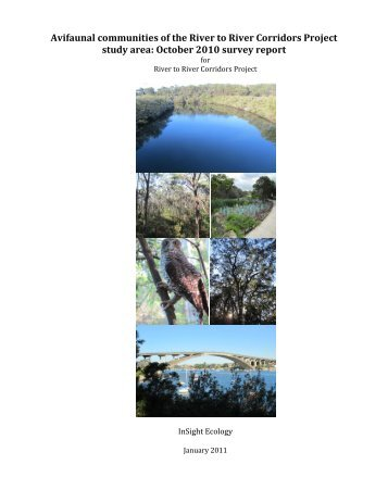 Oct 2010 bird survey report - City of Ryde - NSW Government