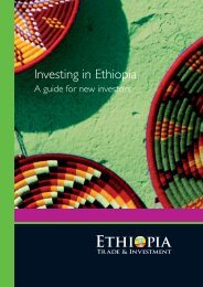Investing in Ethiopia – A guide for new investors