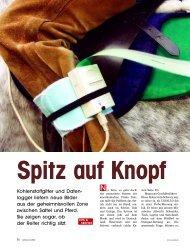 Spitz auf Knopf - Savecomp Megascan GmbH