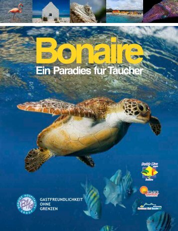 Caribbean Club Bonaire - Belmar Oceanfront Apartments