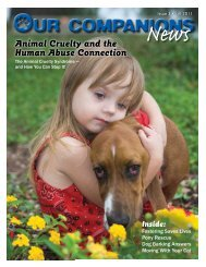 Animal Cruelty and the Human Abuse Connection - Our Companions
