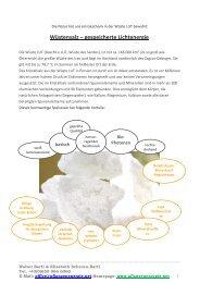Wüstensalz – gespeicherte Lichtenergie - Scheran-Bartl
