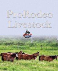 Professional Rodeo Cowboys Association (PRCA) has