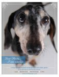 CALMING - PUP Culture Magazine - Page 7