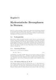 Kapitel 5: Hydrostatische Brennphasen in Sternen