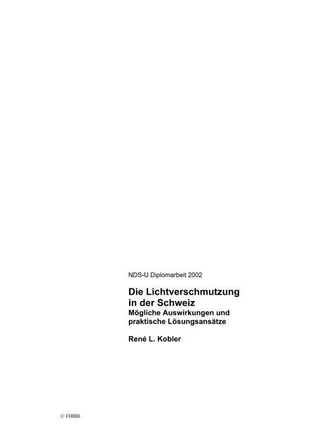 Die Lichtverschmutzung in der Schweiz - Mögliche Auswirkungen und