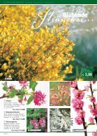 Deine Magazinüberschrift - Seite 4