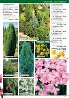 Deine Magazinüberschrift - Seite 5
