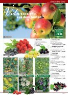 Deine Magazinüberschrift - Seite 7