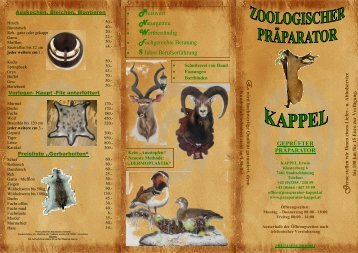 Auskochen, Bleichen, Montieren - Erwin Kappel - Zoologischer ...