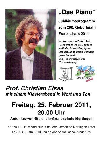 Flyer 25.02.2011 - Mertingen