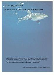 """""""Haie – gejagte Jäger"""" - Naturmuseum St.Gallen"""