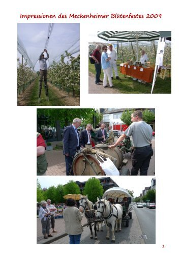 Impressionen des Meckenheimer Blütenfestes 2009