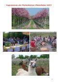 Impressionen des Meckenheimer Blütenfestes 2009 - Page 2