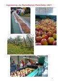 Impressionen des Meckenheimer Blütenfestes 2009 - Page 3