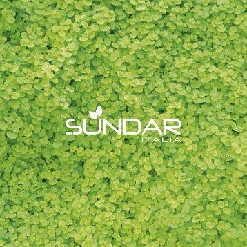Download PDF brochure 2009 - Sundar Italia