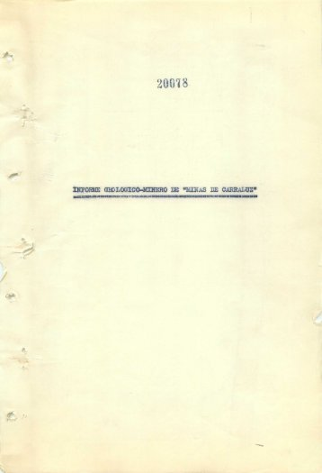 Informe Geologico-Minero - Instituto Geológico y Minero de España