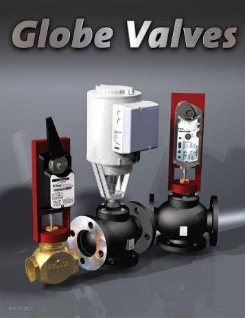 Globe Valves - Bray Controls