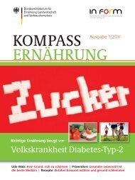 KOMPASS ERNÄHRUNG 1/2011: Volkskrankheit Diabetes ... - BMELV