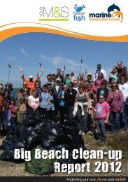 Big Beach - Marine Conservation Society