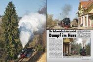 Dampf im Harz Dampf im Harz
