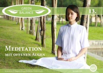 Wirtschaft Nr 1 - Meditation