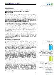 Die Rechte der Mieterinnen und Mieter beim ... - Mieterverband