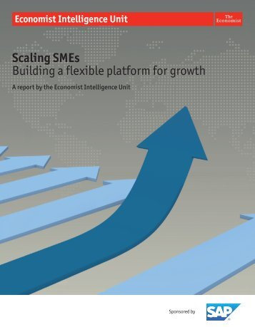 Scaling SMEs Building a flexible platform for growth