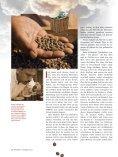 Wie der fair gehandelte Kaffee vor 40 Jahren in die Welt kam ... - Gepa - Seite 2
