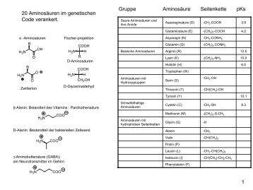 1 Gruppe Aminosäure Seitenkette pKs 20 Aminosäuren im ...