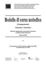 d'insegnamento Telematico / Telematica riferito al regolamento