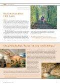 Die NRW-Stiftung - Seite 5