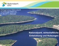 Nationalpark Eifel - Geplanter Nationalpark Teutoburger Wald