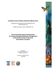Environmental Impact Assessment of community-based bamboo ...