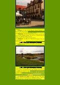 Do 13 Sigmaringen mit Inzigkofen, Dietfurth und Laiz Sigmaringen. - Seite 5