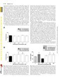 An Investigation of the Neuroprotective Effects of Tetracycline ... - Page 4