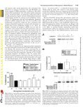 An Investigation of the Neuroprotective Effects of Tetracycline ... - Page 7