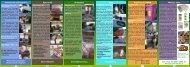 Sperrmüll Grünabfall Angebote des WAB Weitere Infos Glas