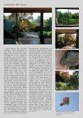 sakura Herbst 2009 als pdf - Langsdorff - Seite 3