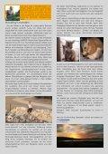 sakura Herbst 2009 als pdf - Langsdorff - Seite 4