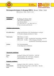 Rettungsschwimmer-Lehrgang DRSA Bronze / Silber / Gold