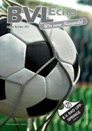 Ausgabe November 2012 - BV Bad Lippspringe