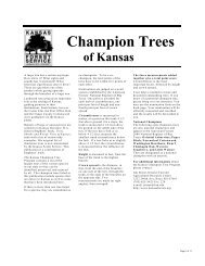 Secondary Wood Processors And Manufacturers In Kansas