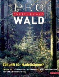 Zukunft für Nadelbäume? - Deutscher Forstverein eV