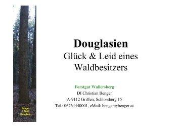Douglasien - BFW