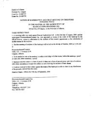 notice of bankruptcy and first meeting of creditors - PwC