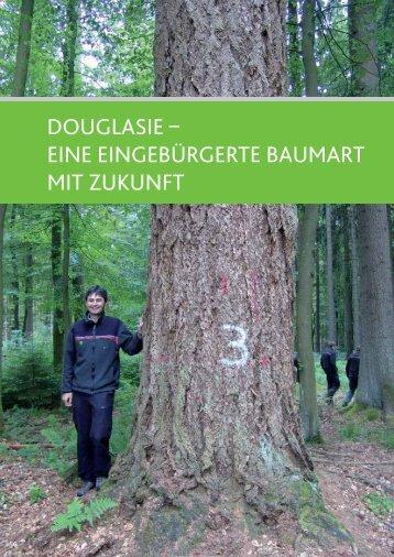douglasie – eine eingebürgerte baumart mit zukunft - Landesforsten ...